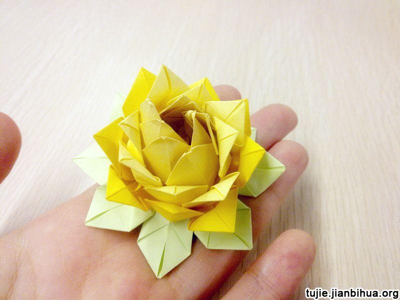 睡莲折纸_莲花的折纸方法图解