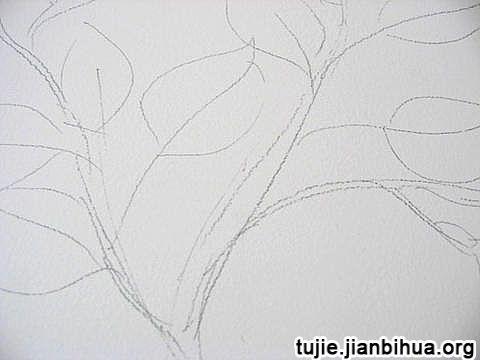 墙面画棵树方法图解