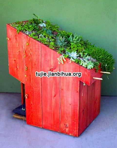 实木打造的狗狗绿色屋顶图解